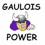 Gaulois power